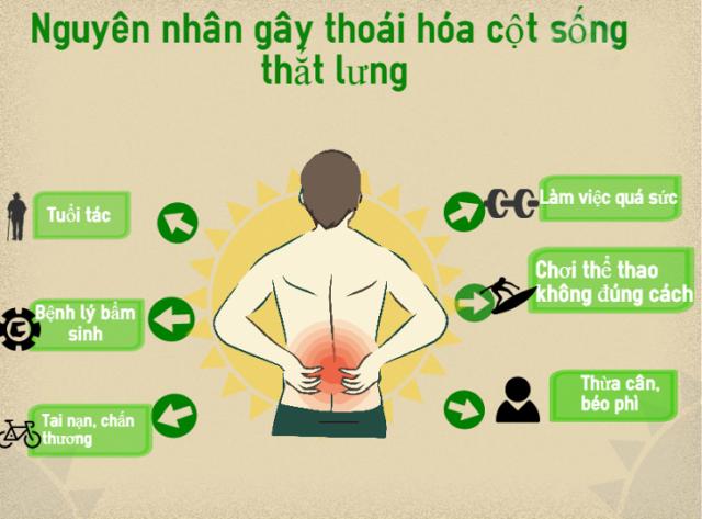 Nguyên nhân gây thoái hóa cột sống thắt lưng