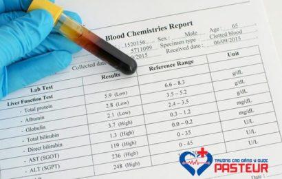 Tìm hiểu về chỉ số AST và ALT bệnh học nội khoa