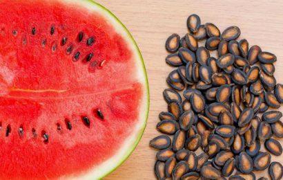 Công dụng chữa bách bệnh của một số loại hạt