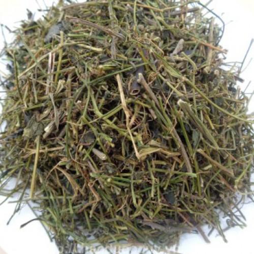 Công dụng chữa bệnh của cây giảo cổ lam