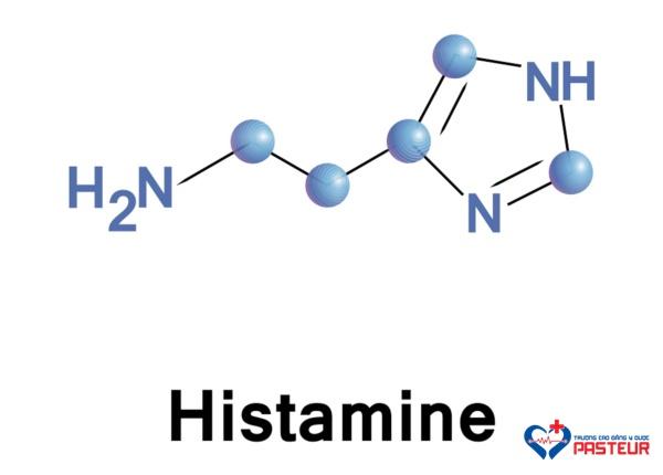 Cơ chế gây dị ứng của histamin là gì?